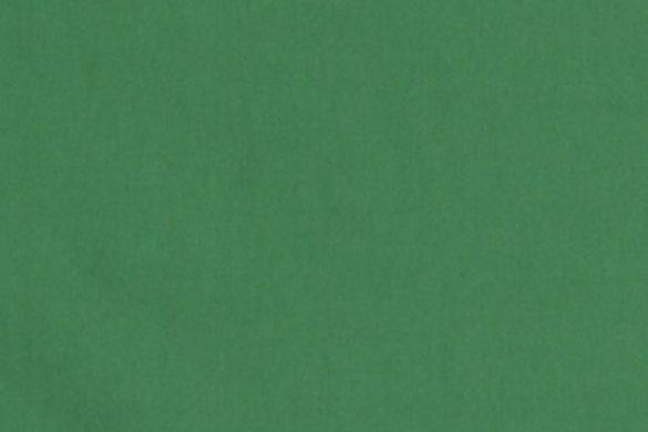 chroma-key-grün